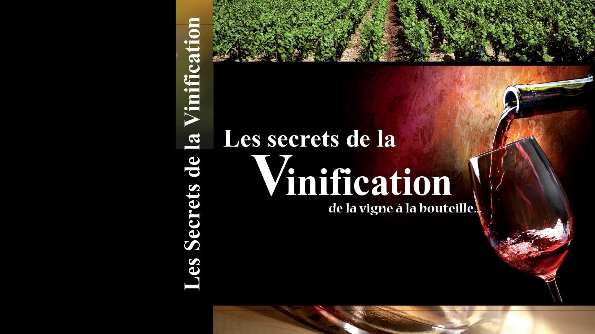 Vidéo réalisée par Déclic Vidéo sur la vinification